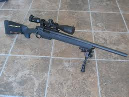 Remington Model 700 .308